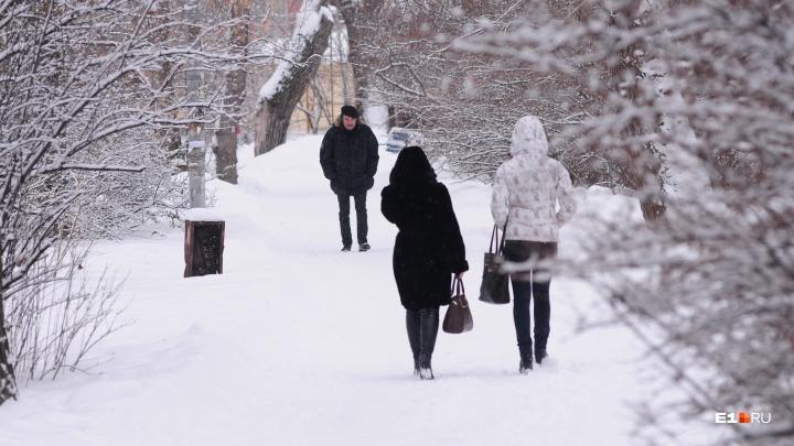 Начало неделив Екатеринбурге будет снежным, а к среде похолодает