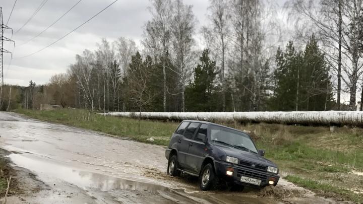 Дорога между Академгородком и посёлком Кирова утонула в грязи: дети ходят в школу по теплотрассе