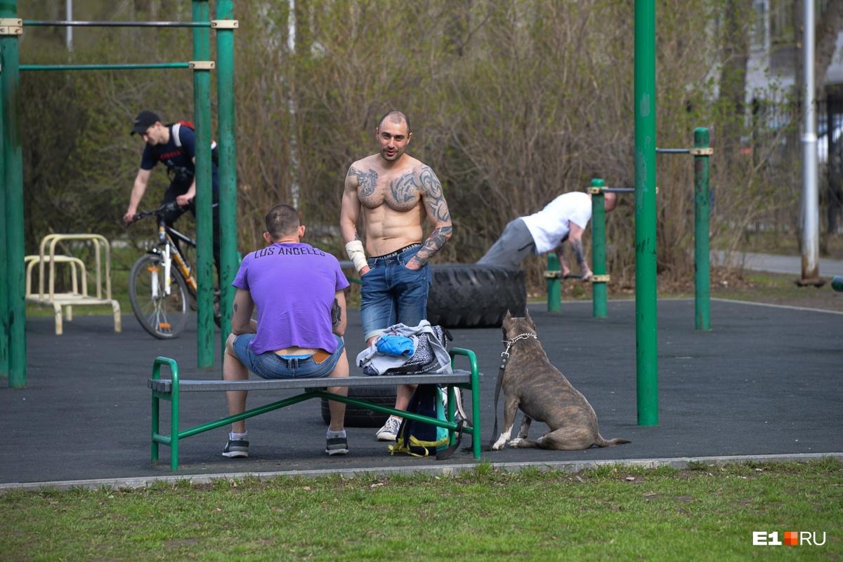 Тут же, в парке, молодые люди занимаются на площадке для воркаута