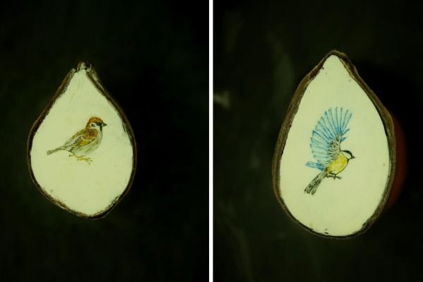 Сибирский мастер микроминиатюрист Владимир Анискин решил создать серию рисунков птиц на срезах яблочных косточек