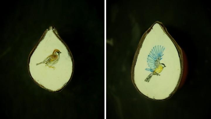 Новосибирец нарисовал синичку и воробья на срезе яблочных косточек