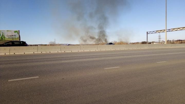 «Площадь, пройденная огнем, — два гектара»: на Кольцовском тракте горит трава