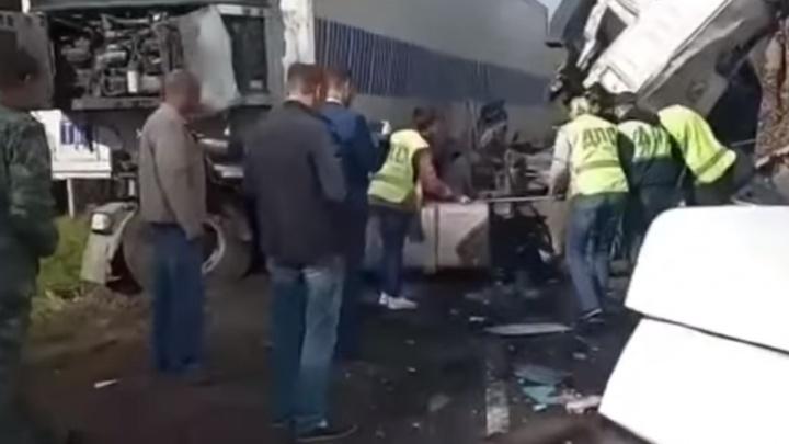 «Мама упала в обморок»: мальчика, пострадавшего во время ДТП с автобусом, направили на операцию