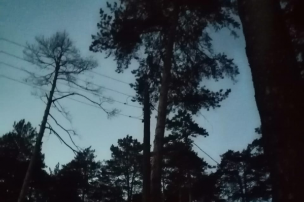 Столбы заваливаются, провода провисают