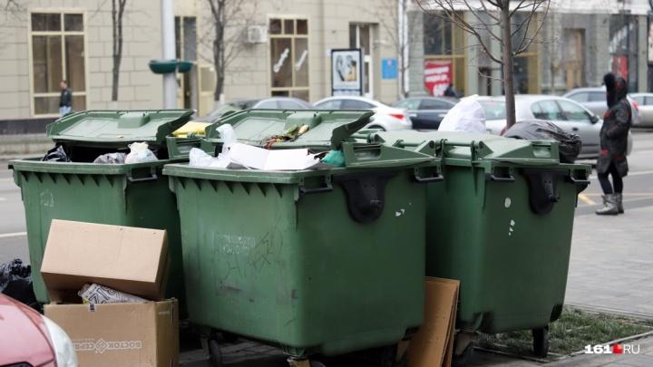 Новый год — новые цены: в Ростовской области утвердили тарифы на вывоз мусора