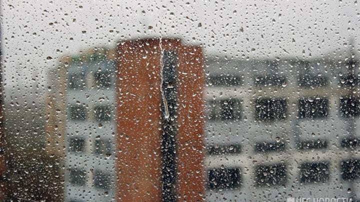 Красноярцев ждут жаркие и дождливые выходные