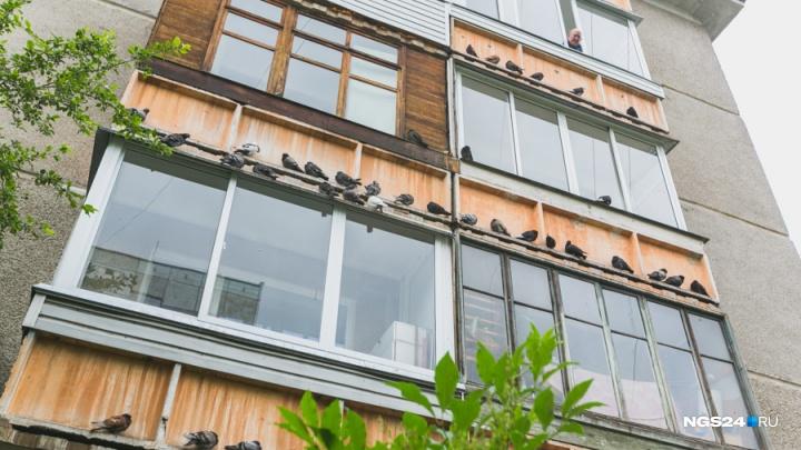 Заемщики помолодели, вырос средний чек квартиры: изменения на рынке недвижимости Красноярска