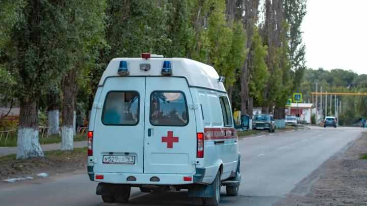 В Ростовской области выросло число заболевших лихорадкой Западного Нила после укуса комара