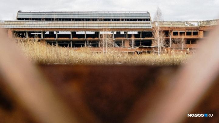 Московский холдинг заявил, что готов купить аэропорт Омск-Фёдоровка