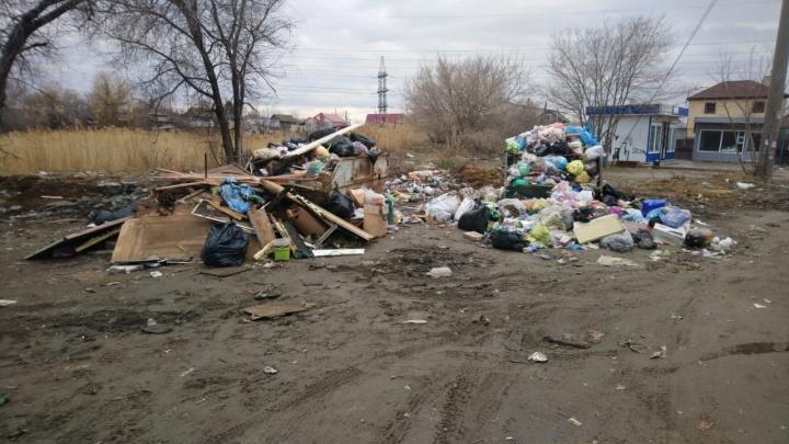 За неделю до дедлайна: подводим итоги работы волгоградского «мусорного короля» за три месяца
