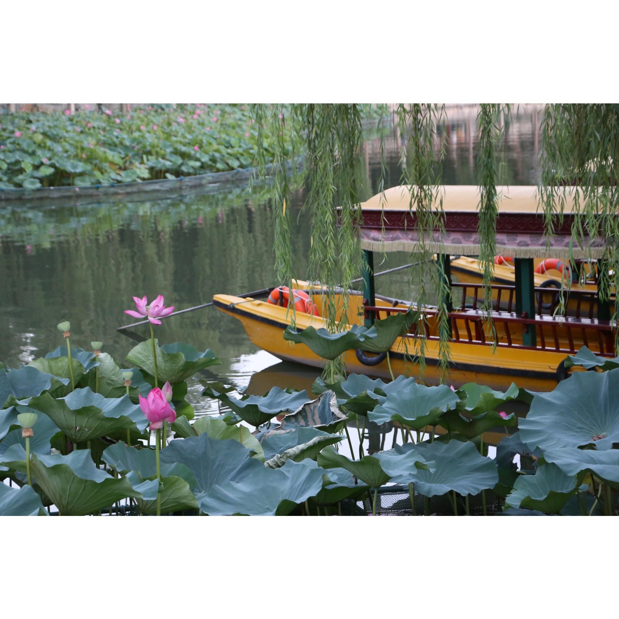 Среди китайских курортов в это время года эксперты рекомендуют Хайнань