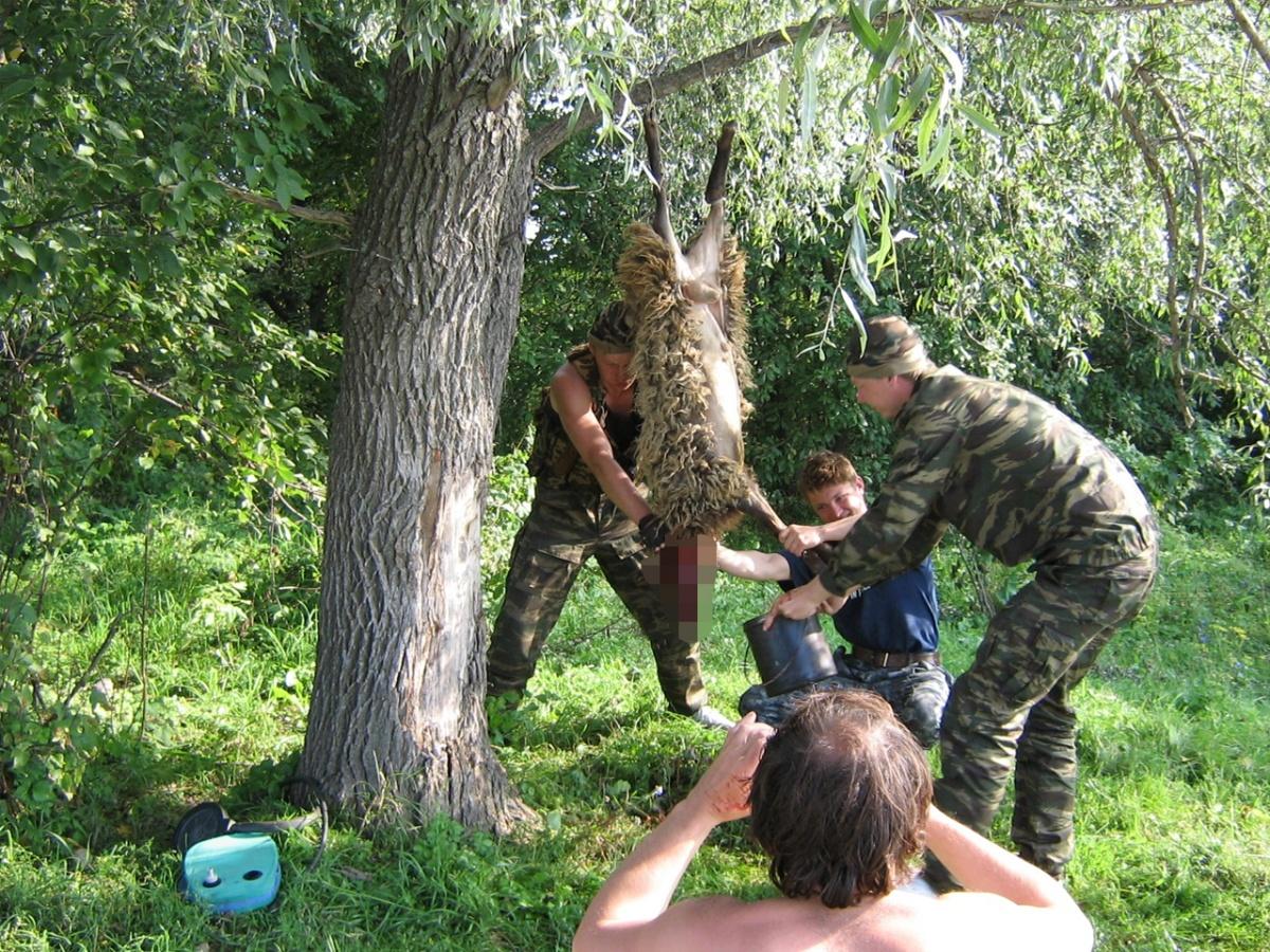 Сотрудники холдинга регулярно ходят в походы
