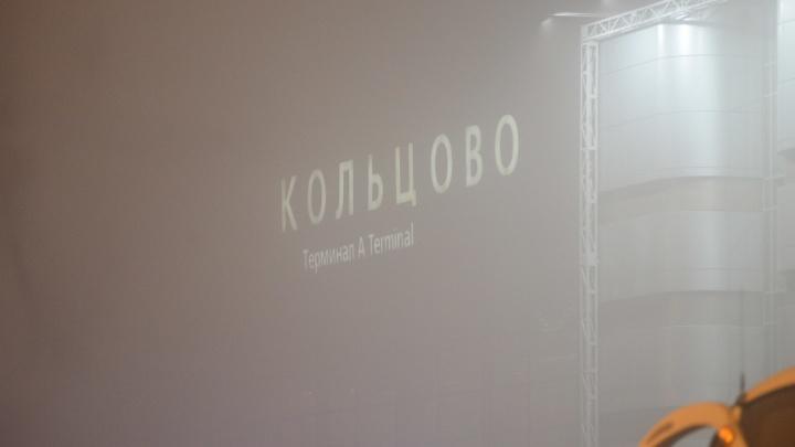 Когда же рассеется? Из-за сильного тумана самолеты, которые должны были сесть в Кольцово, ушли на запасные аэродромы