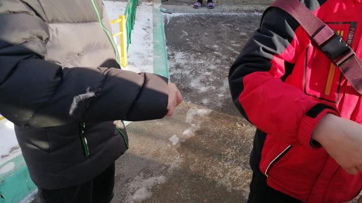 «Провоцирует выходить на путь догхантинга»: возле гимназии «Универс» собаки напали на двух мальчиков