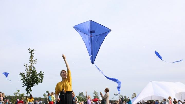 Фестиваль воздушных змеев в Ярославле: ищите себя на фото!