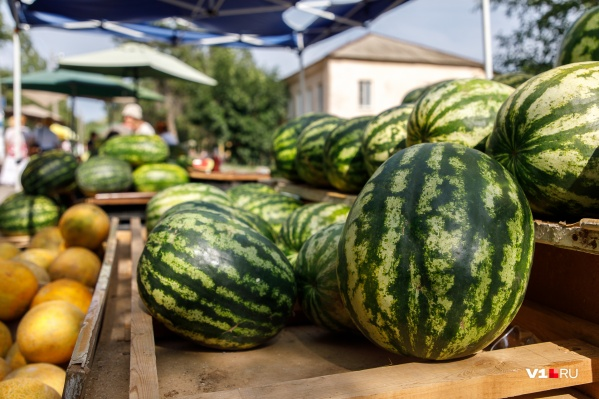 На рынках Волгограда в расцвете арбузный бум