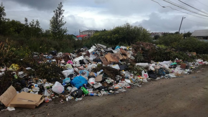 Исчезают контейнеры: в Челябинске шесть перевозчиков отказались возить отходы на новый полигон