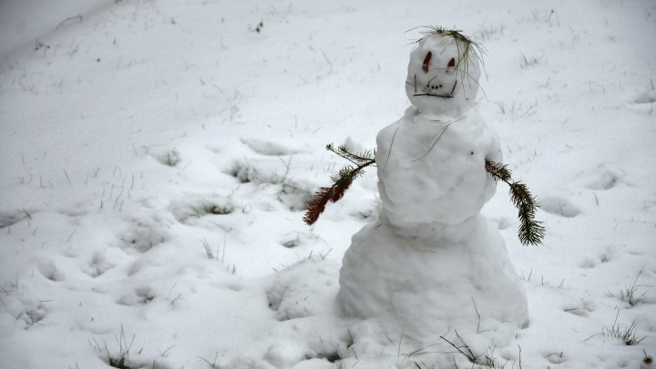 Тепла больше не будет: к концу дня в Новосибирске сильно похолодает