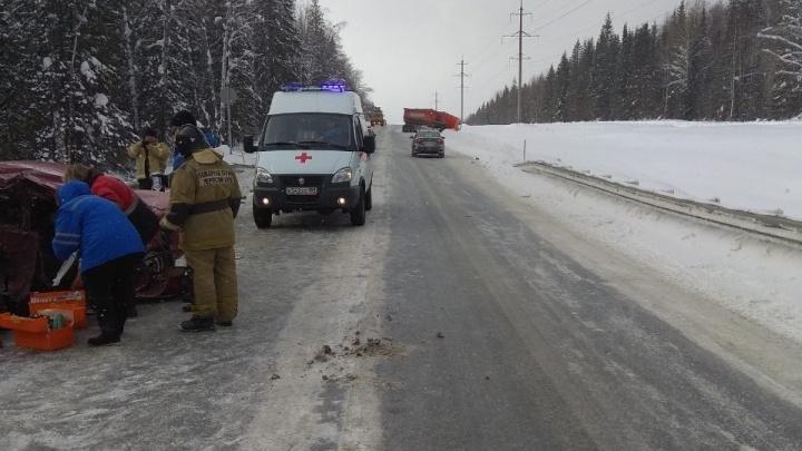 После гибели 10-летней девочки на трассе Пермь — Ильинский возбуждено уголовное дело