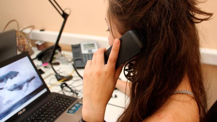 Женщина отдала миллион рублей экстрасенсу за снятие порчи по телефону