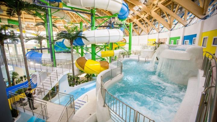 Семья из Красноярска подхватила опасную инфекцию в новосибирском аквапарке