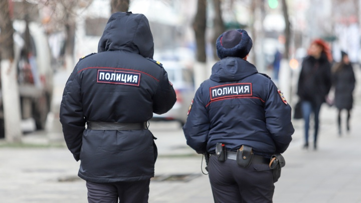 В Ростовской области мужчина напал на полицейских с пластмассовым пистолетом