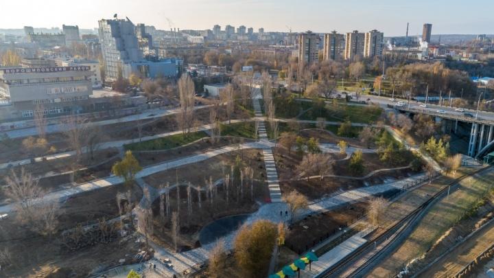 В Волгограде решили заново озеленить вырубленный склон поймы Царицы