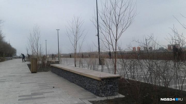 Депутат предложил установить лестницы и сетки вдоль набережной после гибели упавшей в Енисей пары