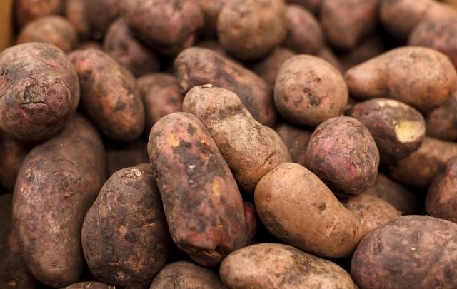 Из Кургана незаконно пытались вывезти 40 тонн картофеля