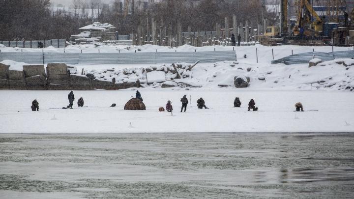 Десятки смелых новосибирцев вышли на тонкий лёд Оби у Димитровского моста