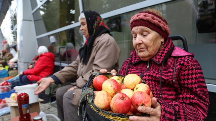 Депутаты Башкирии обяжут садоводов платить за использование колодцев