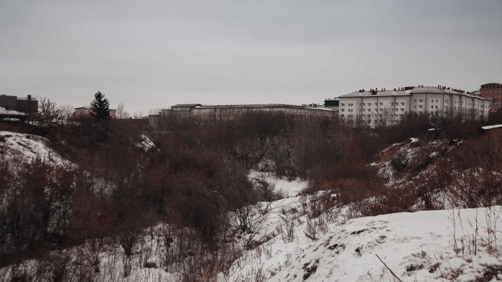 Строить в зеленой зоне — всегда проигрышный вариант: журналист 72.RU о скандале вокруг лога Тюменки