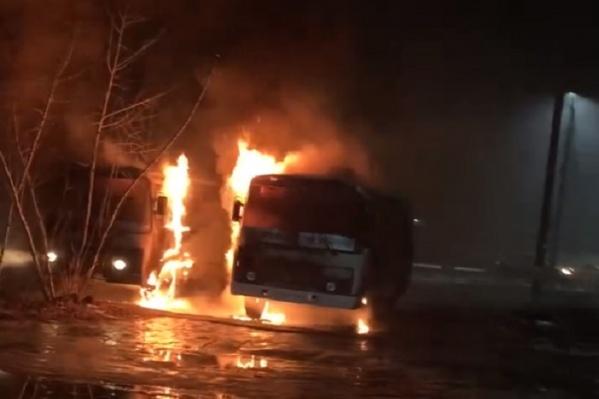 Автобусы выгорели полностью