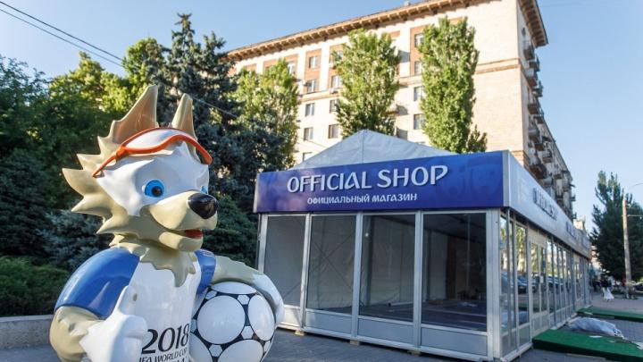 Минспорта России отказало волгоградской «Олимпии» в деньгах на подготовку к прошедшему ЧМ-2018