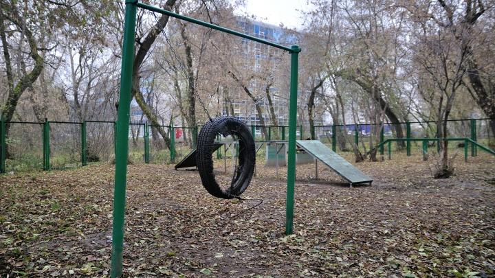 Парки и скверы Екатеринбурга в конце месяца начнут обрабатывать от клещей