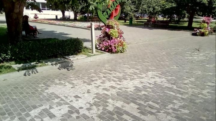 «Стыдно за туристический маршрут»: у «Теремка» разрушилась тротуарная плитка