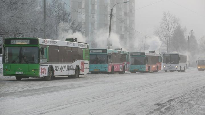 Рекламным агентствам запретили обклеивать рекламой автобусы из-за Универсиады