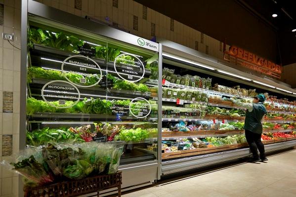 Благодаря модулю покупатели смогут в торговом зале смотреть, как растёт зелень на продажу