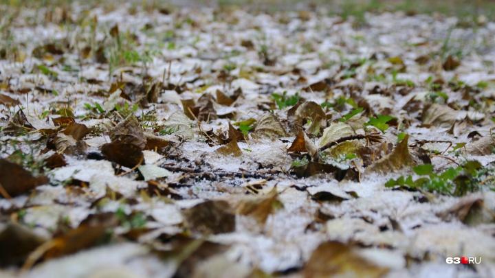 Капризы природы: в Самарской области ожидается мокрый снег