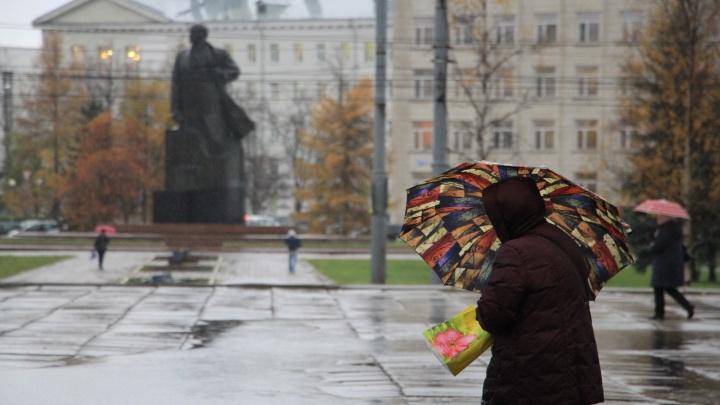 Сильные дожди и порывистый ветер: 2 октября в Архангельской области ожидают непогоду