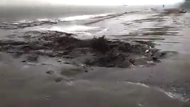 """Очевидцы: «На пляже у """"Ладьи"""" в Волгу спустили грязные стоки»"""