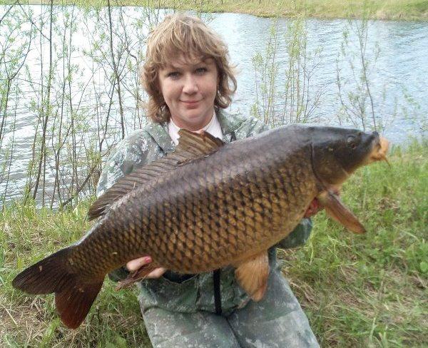 Надежда Бронникова поймала 11-килограммового сазана в секретном озере под Новосибирском. После фотосессии с Надеждой рыба отправилась обратно в озеро