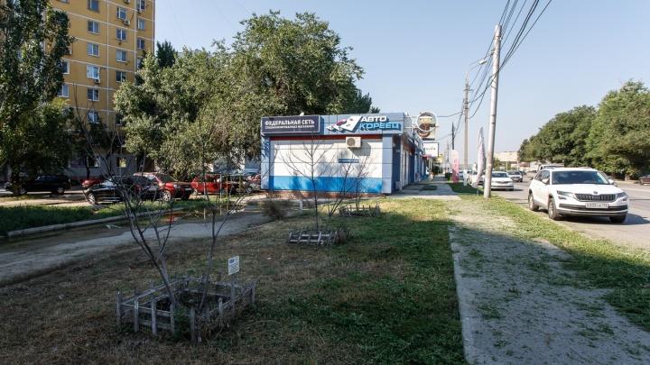 Выиграть суд и проиграть магазин: юридическую фирму лишили земли в центре из-за мэрии Волгограда