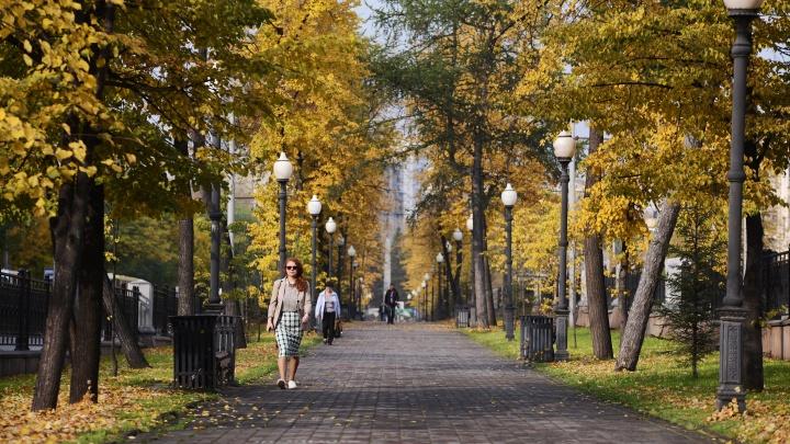 Успели погулять? Это воскресенье в Екатеринбурге стало самым теплым за 20 лет