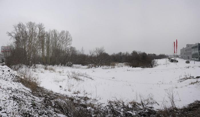 Сегодня участок занят только несколькими деревьями и кустами