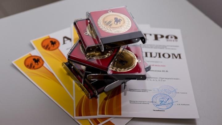 Великолепная семерка: мясные деликатесы от «Таврии» взяли золото на региональной агровыставке