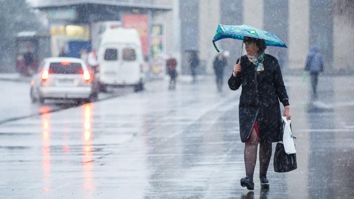 В Волгоград вместе с потеплением наведается сногсшибательный ветер