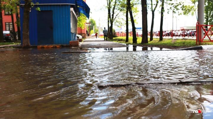 Атмосферный монстр продолжит заливать дождями: какая погода в Ярославле будет в выходные