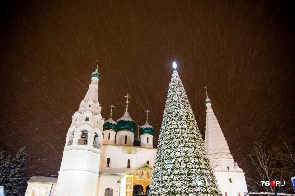 В Ярославле власти решили не покупать новую ёлку — поставили старую