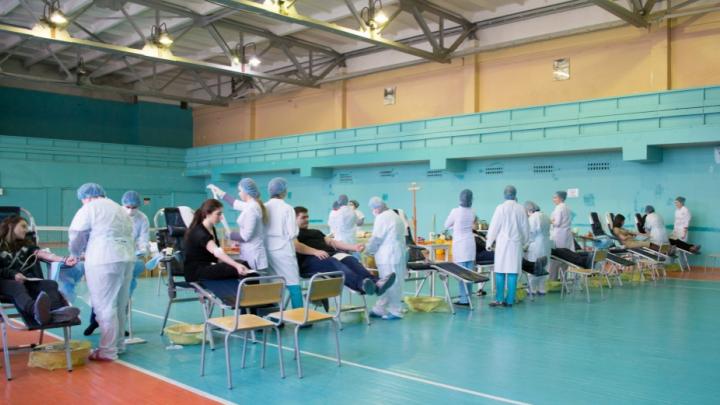 Ярославцам заплатят за сдачу крови: когда можно стать донором
